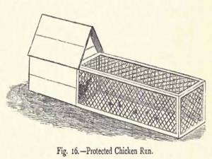 Chicken coop with attached wire covered outdoor run.