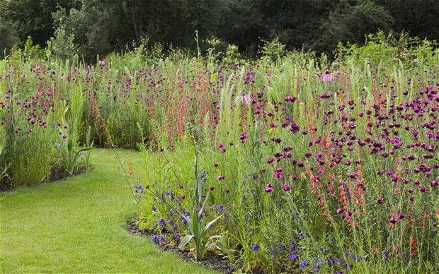 Town U0026 Country Gardening   WordPress.com