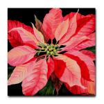 red_poinsettia_tile_coaster