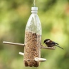 wood-spoon-bird-feeder