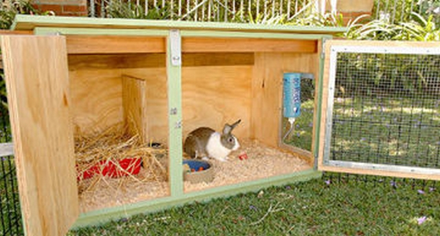 Diy rabbit hutch building your first rabbit hutch for How to build a rabbit hutch plans free