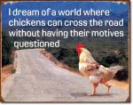 chickens-motives