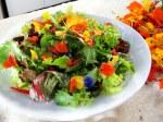 flower-petal-salad2